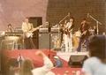 Rolling Stones 1978-06-17